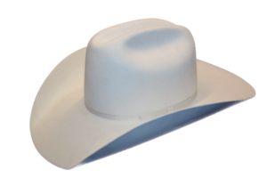 The White Hat Smithbilt